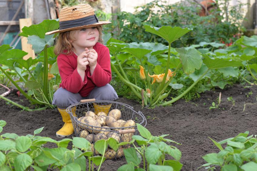 Kind im Gemüsegarten