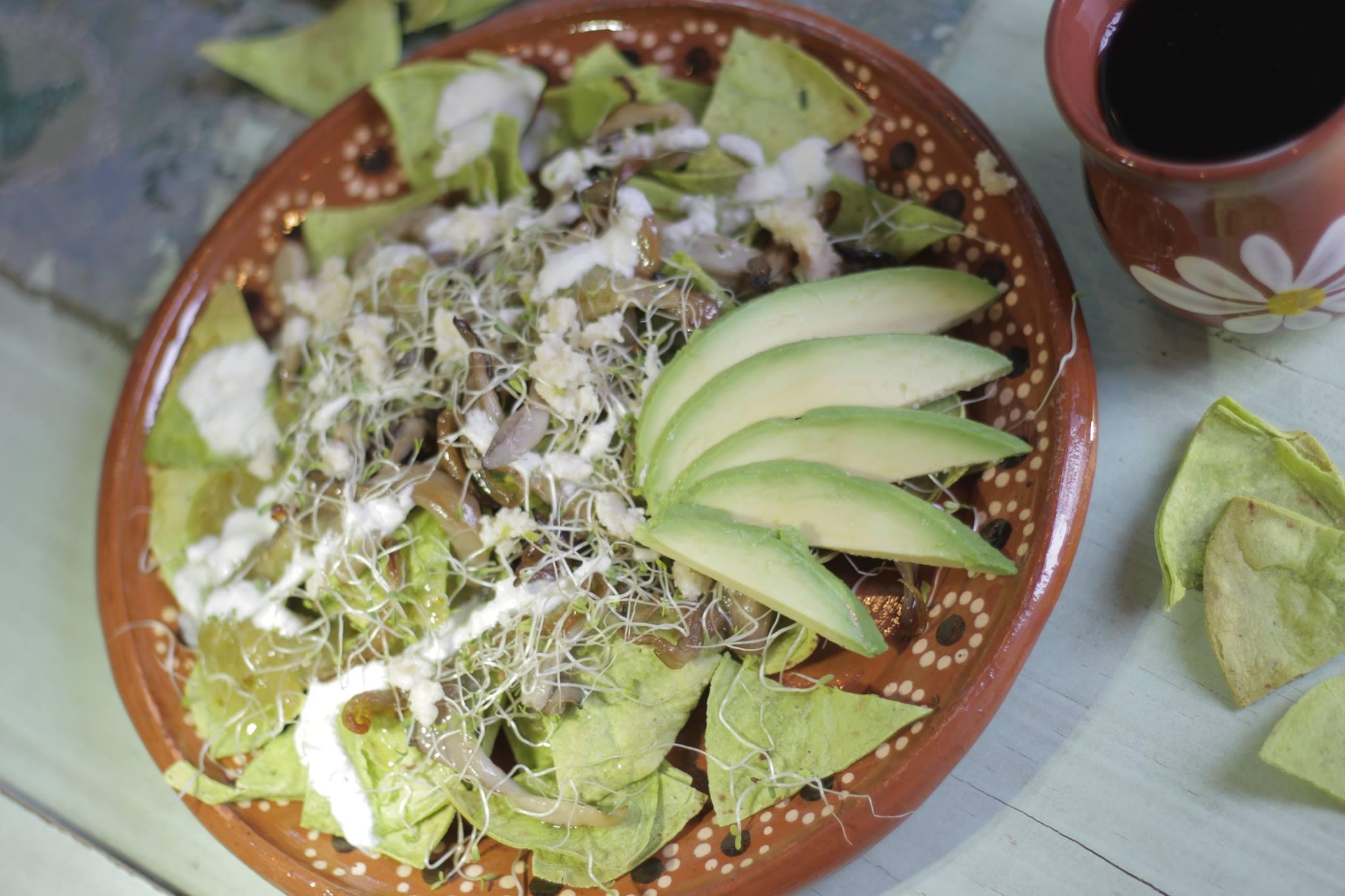 Chilaquiles aus Kaktusmehl mit grüner Chili-Sauce