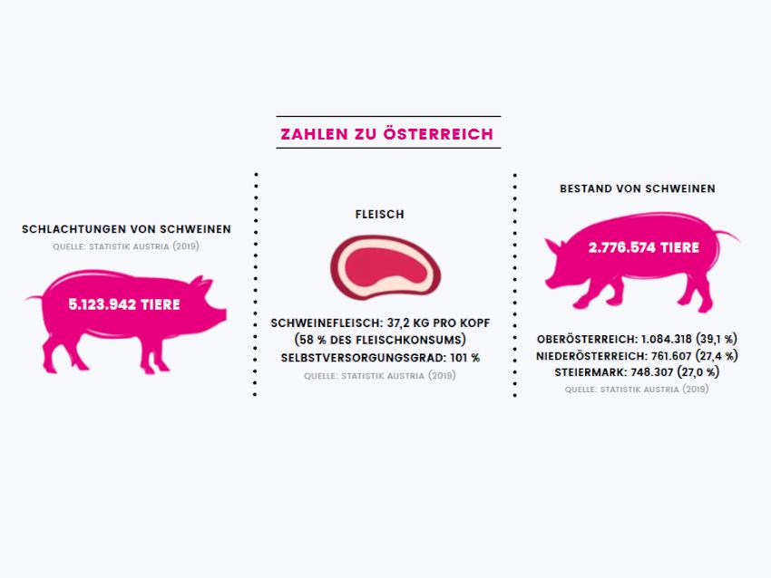 Zahlen zu Österreich, Quelle: Statistik Austria (2019)