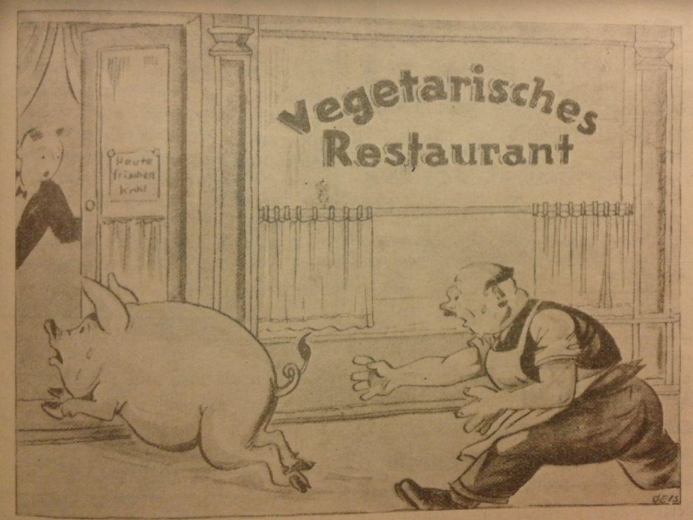 Zeichnung aus: Naturheilzeitung, 1932