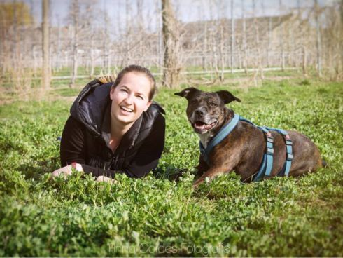 Hundetraining: gewaltfrei & belohnungsbasiert