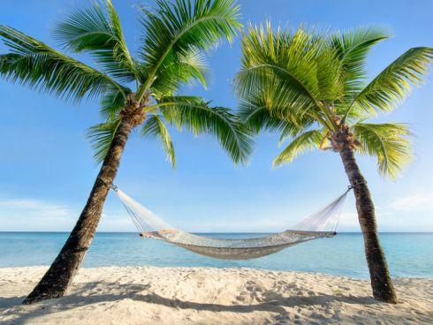 Strand mit Palmen und Hängematte