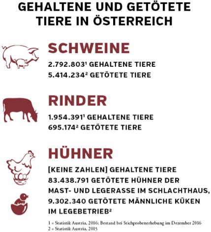Die Zahlen beziehen sich auf gehaltene und getötete Tiere in Österreich pro Jahr.
